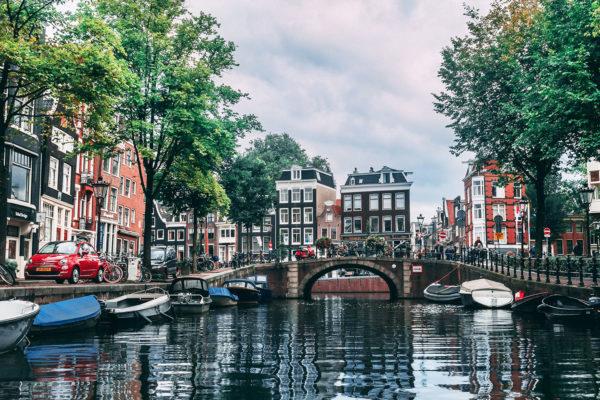New Dutch profile online