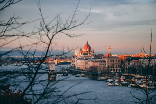 Interview #3 – Péter Inkei (Hungary)